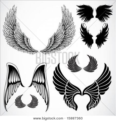 Set of detailed vector wings. Easy to edit