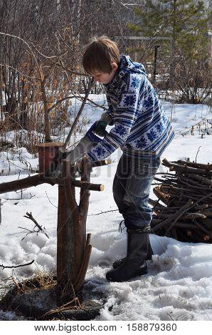 The teenage boy saws dry branches on the seasonal dacha