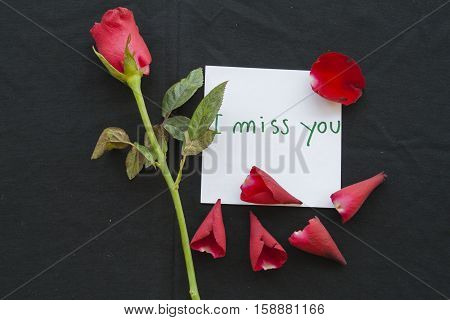 i miss you messages card with red rose on background black