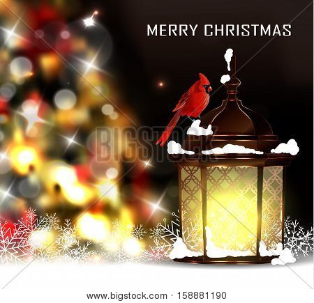 Christmas tree light background. Vector on dark with snow and standing street light and red bird cardinal