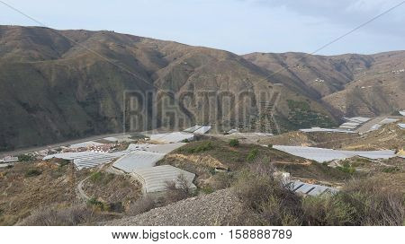 Plastic Greenhouses In Valley