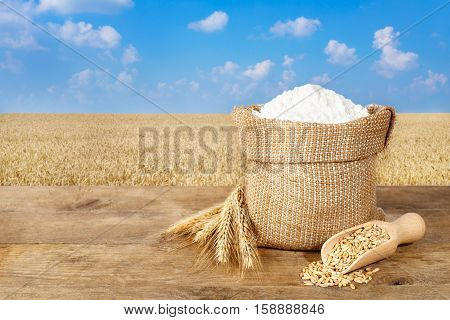 wheat flour in sack. Ears of wheat and wheat flour in bag on table on wheat field background. Agriculture and harvest concept. Gold wheat field and blue sky. Photo with copy space area for a text
