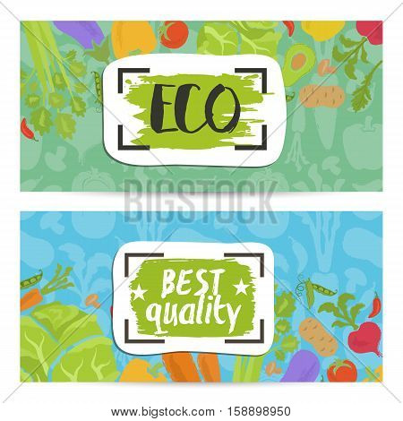 Eco products horizontal flyers set vector illustration. Natural cabbage, tomato, radish, mushroom, peppers, potatoes, carrots. Vegetarian organic food, healthy lifestyle, bio and eco nutrition concept