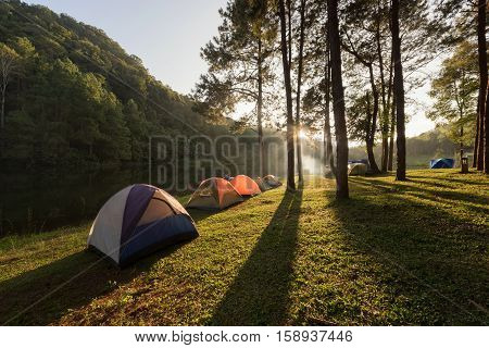 Camping and tents under the pine forest in sunset at Pang Ung pine forest park Pang Ung Mae Hong Son Thailand