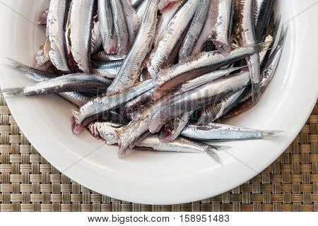 Multitude of anchovies sena head clean and ready to be cooked. white plate