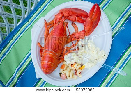 A cooked red Maine lobster sits on a paper plate during a summer party ready to eat along with potato salad and another side dish.
