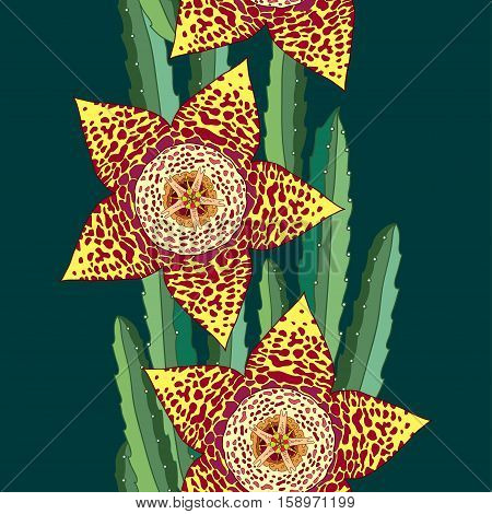 Vector seamless pattern with outline Stapelia flower and stems on the dark green background. Bright floral background in contour style with succulents for summer design.