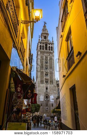 Sunset view of the Giralda tower, famous bell tower of the Cathedral of Seville, Andalusia, Spain