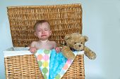 foto of fussy  - Image of a cute fussy baby and a teddy bear peeking out of a wicker trunk - JPG