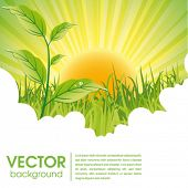 stock photo of environmentally friendly  - nature ecology poster and website page - JPG