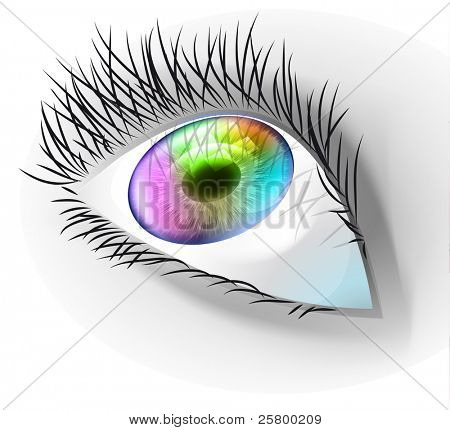 Multicolor human eye. EPS10 vector illustration.