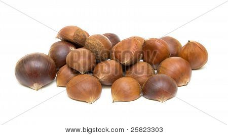 Chestnuts (castanea Sativa) On White Background