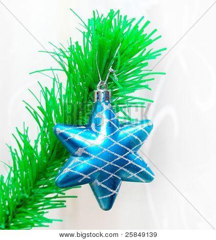 Single star over green fir branch