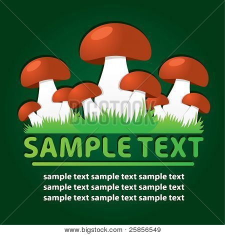 Mushrooms. Vector template