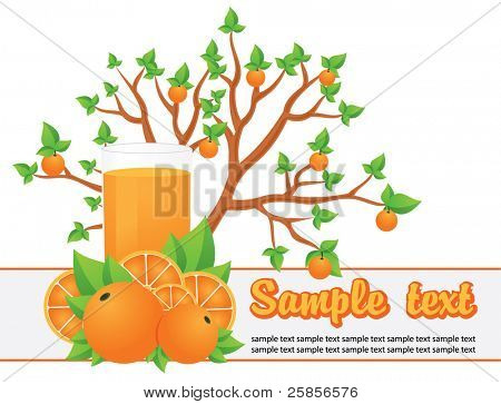Orange tree and juice. Vector template