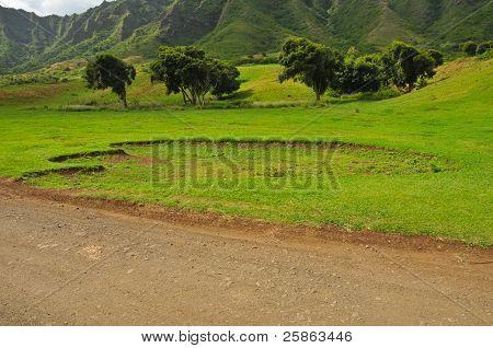 Huge Animal Footprint In A Field By Road