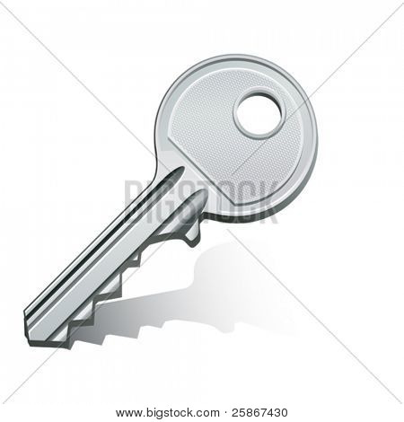 vector illustration of key