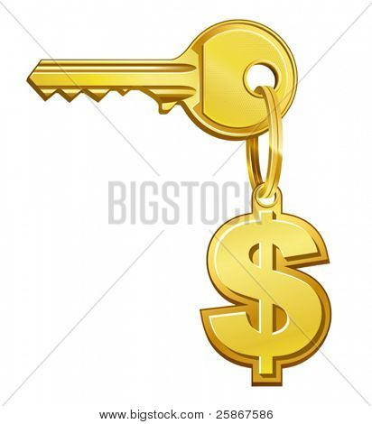 vector illustration of Key to money
