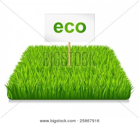 Green grass eco