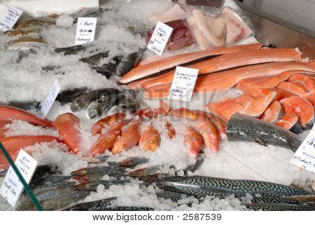 Fish On Fishmonger'S Slab