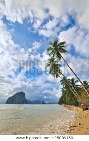 Tropical Getaway Beach with Palms and mountains