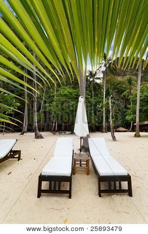 Empty luxury beach beds under a palm tree at exotic Asian beach