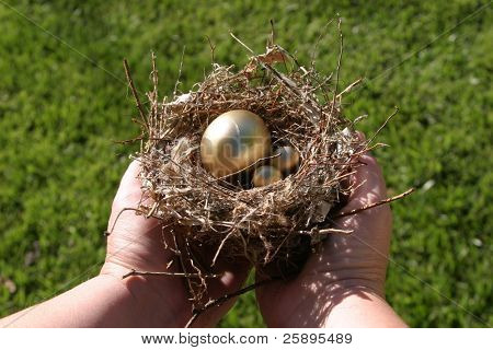 golden eggs in a bird nest being held by a pair of hands representing finincial freedom and security in the image of a Nest Egg