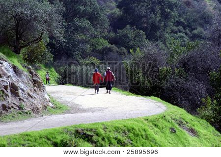 a couple walks along a winding path hand in hand as they enjoy the outdoors and companionship.