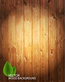 stock photo of walnut-tree  - Vector wooden background - JPG