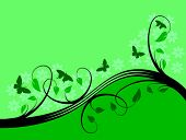 foto of mint leaf  - A green floral background vector illustration with room for text - JPG