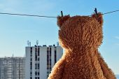 Fuzzy Brown Teddy Bear Hanging On A Clothesline With High Building View poster