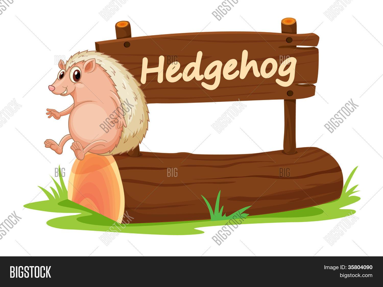 1 envase Pañuelos de bolsillo y erizos y todo lo mejor servilletas su Hedgehog animales follaje