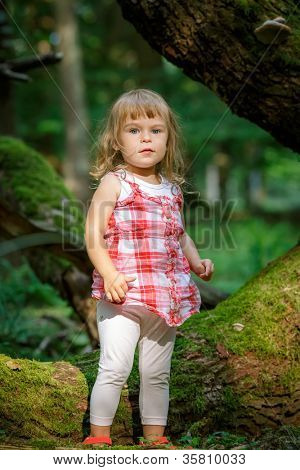 Little girl in the dark green forest