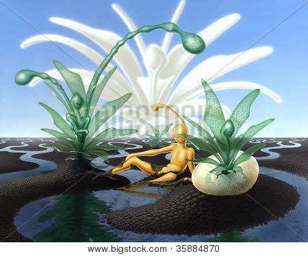 Surreal Scenery With Stream And Translucent Plants