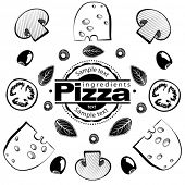 Ingredients for pizza with mushrooms. Vector illustration in the engraving style, can be used for de
