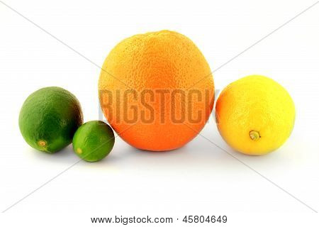 Group Organic Citrus Fruits - Lemon, Orange, Lime And Key Lime,