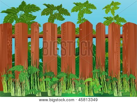 Landscape With A Wooden Fence.