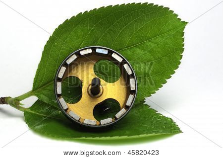 Electrical motor on leaves