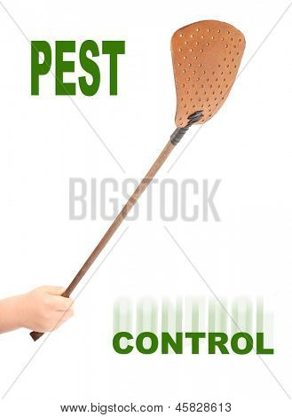 The Flyswatter. Ecological pest control. Picture with space for your text.