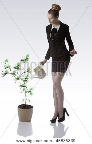 Blonde Business Woman Watering Euro Money Plant