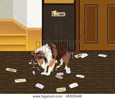 Dog Attacking Mail