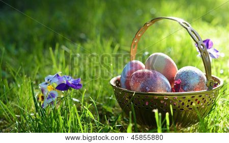 easter eggs on the morning grass