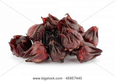 Closeup of roselle flowers in isolated white background