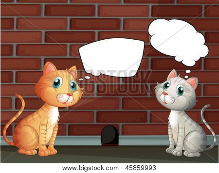 Illustration of the two cats with empty callouts
