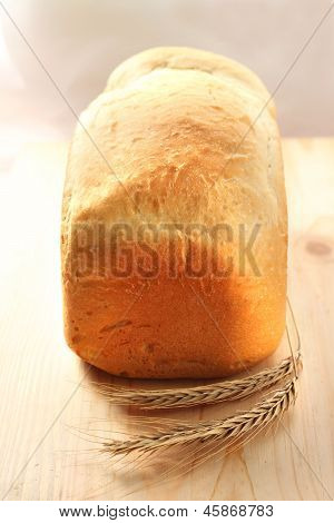 Homemade Loaf Of Wheat Bread