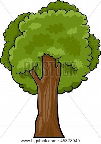 Cartoon Illustration Of Deciduous Tree