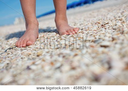 Boys Feet On Seashells