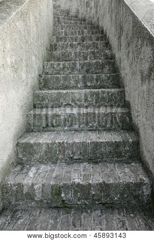 Stone stairs leading upwards
