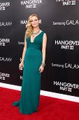 LOS ANGELES - Mai 20: Heather Graham bei der Premiere von