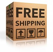 free shipping package from online internet webshop cardboard box as webshop shopping icon parcel wit